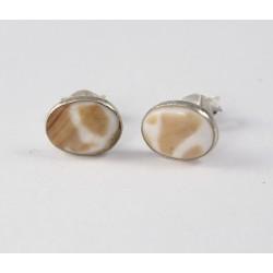 Ohrstecker Muschel oval, in Silber eingefaßt