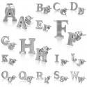 Buchstaben  Ohrstecker   Edelstahl